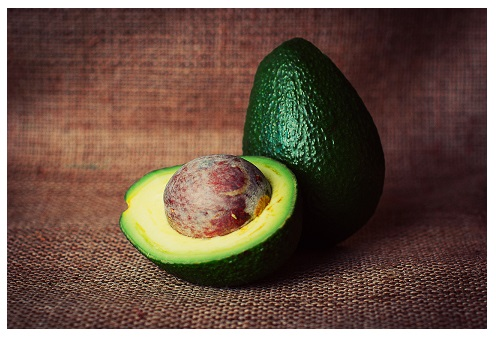 avocado - 496x338 - with border